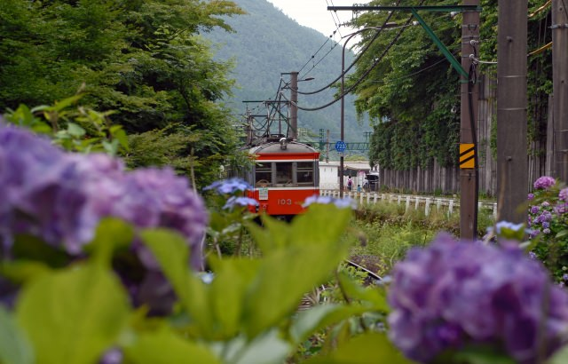 1. You can enjoy the lovely sceneries from the Hakone Mountain Train