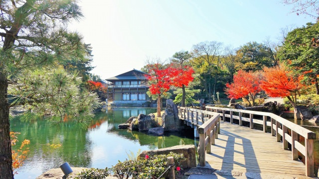 7. Tokugawa Garden