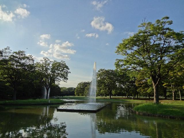 2. Yoyogi-Kōen Park