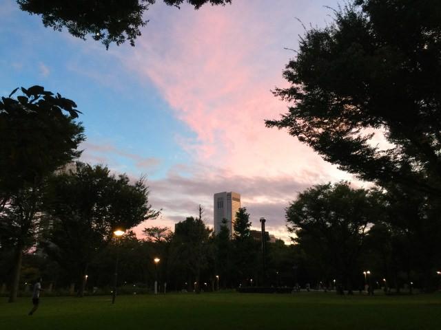 2. Shinjuku Chuo Park