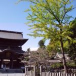 Top 10 Tourist Attractions & Best Things to Do in Aso, Kumamoto