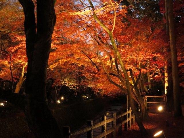6. Kitano Tenmangu Shrine