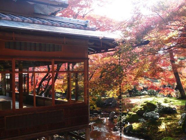 9. Hogonin Temple