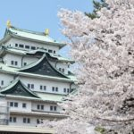 The 10 Best Places to See Cherry Blossom in Nagoya, Japan