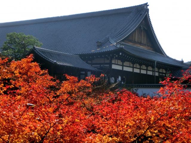 2. Tofukuji Temple