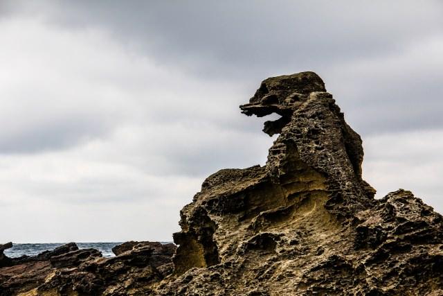 3. Godzilla iwa