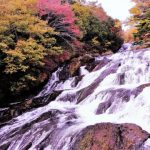 Top 10 Tourist Attractions & Best Things to Do in Nikko, Japan