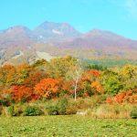 Sightseeing in Niigata! Established Spots to Hidden Gems Top 10