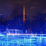 Fantastic Christmas in Tokyo! The 10 Must-go Sightseeing spots on Christmas!