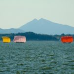 Regulars to Hidden Gems! The 10 Must-visit Sightseeing spots in Ibaraki prefecture!