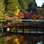10 Most Famous Places to See Autumn Leaves in Wakayama!
